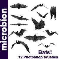 Bats Photoshop Brushes by Microbion Graphics