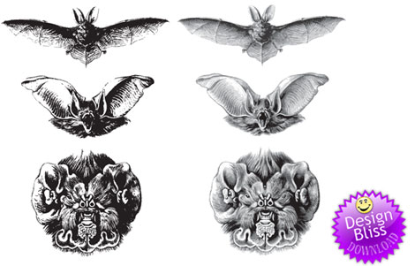 Free Vectors Bats Freebies Illustrator Downloads