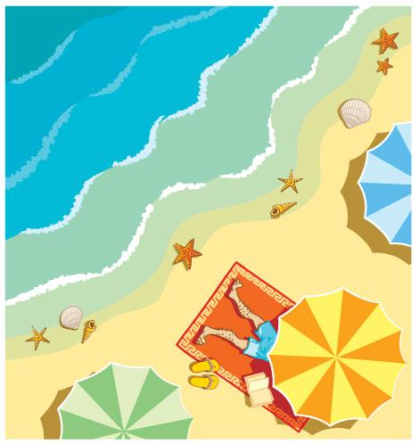 Vector starfish, shells, beach umbrellas