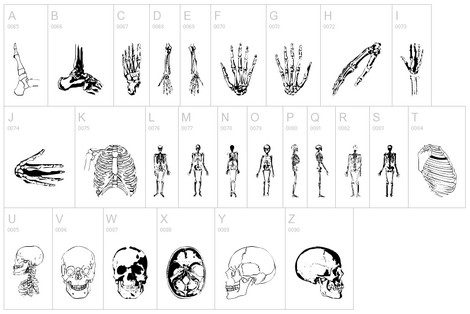 Skulls and Skeleton Dingbats